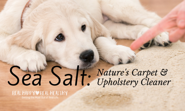 Sea Salt for Cleaning Pet Stains