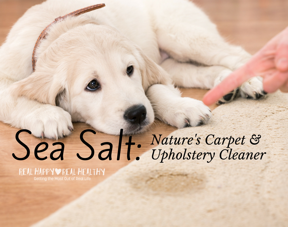 Sea Salt For Cleaning Pet Stains Real Happy Real Healthy